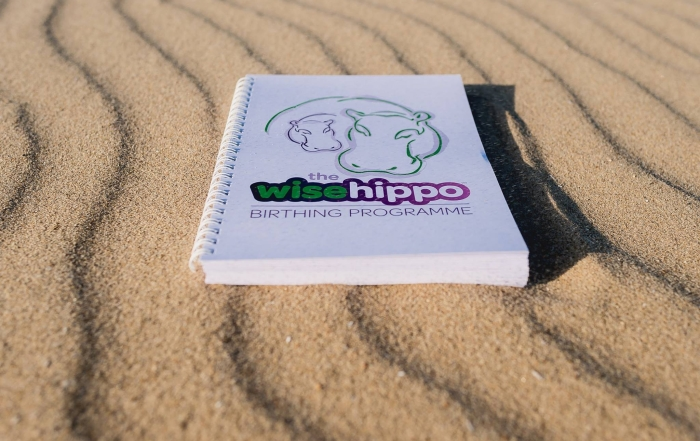 hypnobirthing the wise hippo programme Making a difference to birth is a matter of perspective